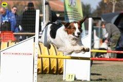 gp-tuscany-15-02-2009-0082.jpg
