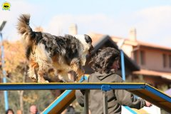 gp-tuscany-15-02-2009-0098.jpg