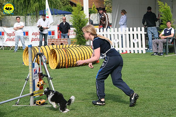 09-agility-dog-roma-29-05-2010