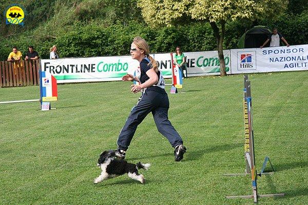 12-agility-dog-roma-29-05-2010