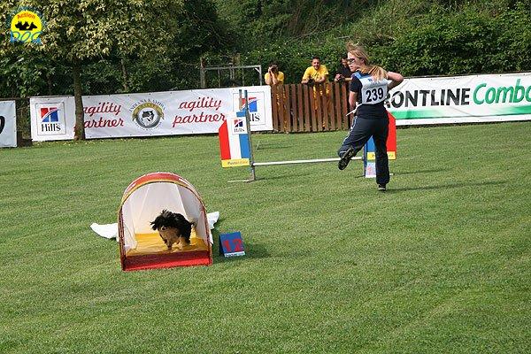13-agility-dog-roma-29-05-2010