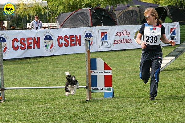 15-agility-dog-roma-29-05-2010
