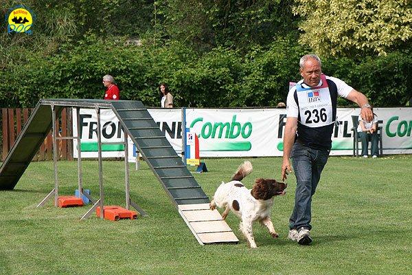 16-agility-dog-roma-29-05-2010