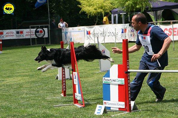 31-agility-dog-roma-29-05-2010