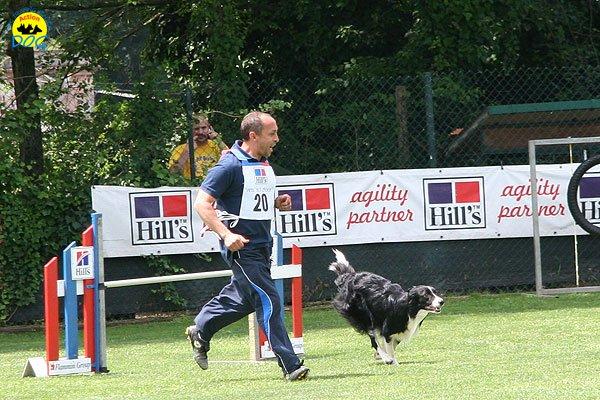 35-agility-dog-roma-29-05-2010