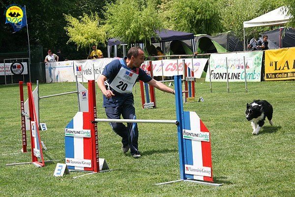 36-agility-dog-roma-29-05-2010