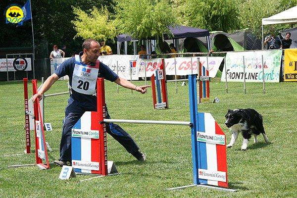 37-agility-dog-roma-29-05-2010