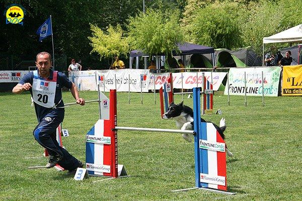 38-agility-dog-roma-29-05-2010