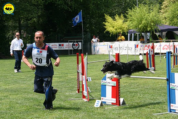 39-agility-dog-roma-29-05-2010