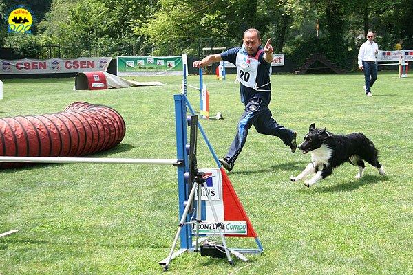 41-agility-dog-roma-29-05-2010