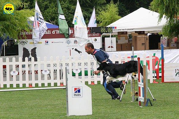 45-agility-dog-roma-29-05-2010