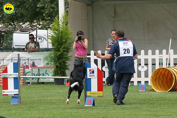 49-agility-dog-roma-29-05-2010
