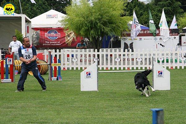 53-agility-dog-roma-29-05-2010