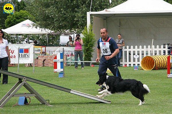 54-agility-dog-roma-29-05-2010