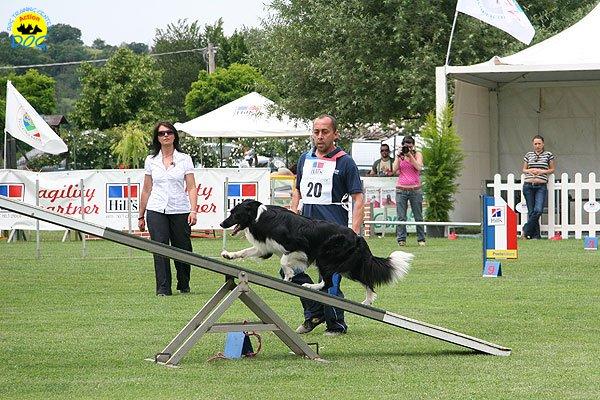 55-agility-dog-roma-29-05-2010