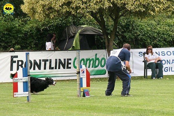 60-agility-dog-roma-29-05-2010