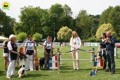 17-agility-dog-roma-29-05-2010