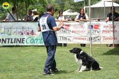 29-agility-dog-roma-29-05-2010