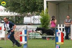 46-agility-dog-roma-29-05-2010