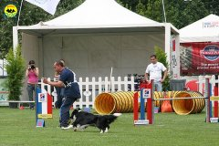 48-agility-dog-roma-29-05-2010