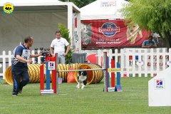 50-agility-dog-roma-29-05-2010
