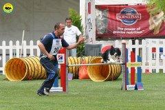 51-agility-dog-roma-29-05-2010