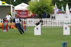 52-agility-dog-roma-29-05-2010