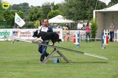 56-agility-dog-roma-29-05-2010