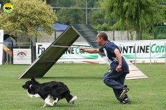 59-agility-dog-roma-29-05-2010