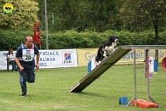 63-agility-dog-roma-29-05-2010