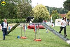64-agility-dog-roma-29-05-2010