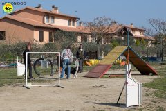 003 Open Day Action Dog 2015.jpg