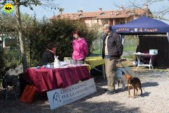 009 Open Day Action Dog 2015.jpg