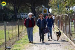 053 Open Day Action Dog 2015.jpg