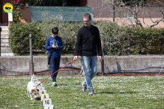 074 Open Day Action Dog 2015.jpg