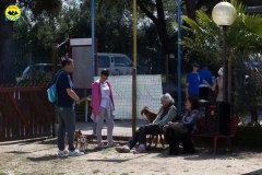 089 Open Day Action Dog 2015.jpg