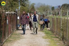 095 Open Day Action Dog 2015.jpg
