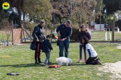 140 Open Day Action Dog 2015.jpg
