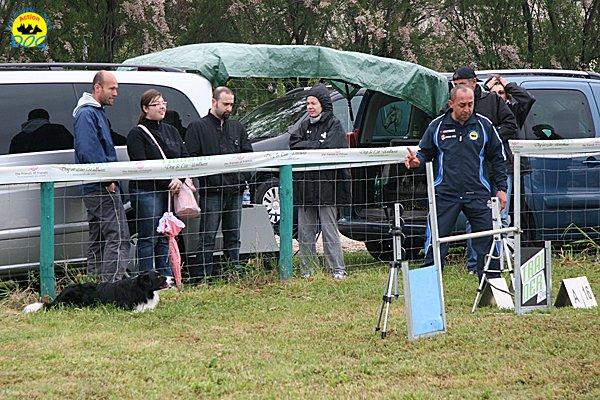 007-agility-dog-rosignano-02-05-2010