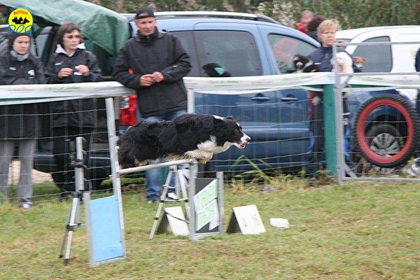 008-agility-dog-rosignano-02-05-2010