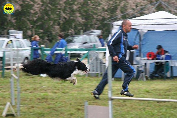 009-agility-dog-rosignano-02-05-2010