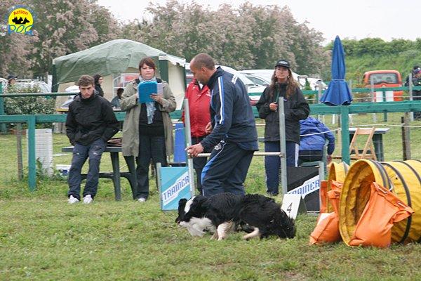 010-agility-dog-rosignano-02-05-2010