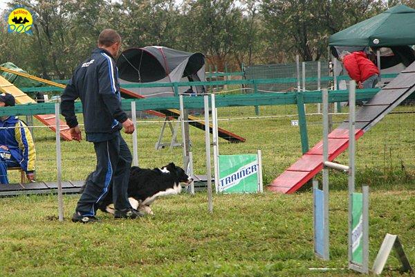 011-agility-dog-rosignano-02-05-2010