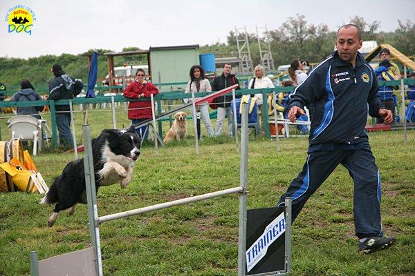 015-agility-dog-rosignano-02-05-2010