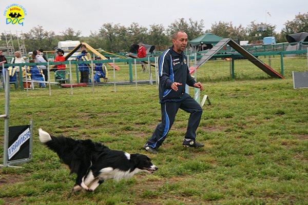 016-agility-dog-rosignano-02-05-2010