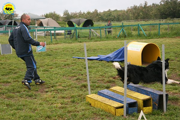 017-agility-dog-rosignano-02-05-2010