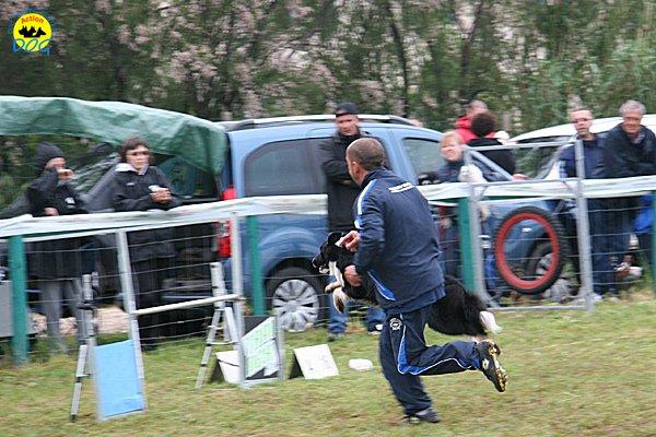 024-agility-dog-rosignano-02-05-2010