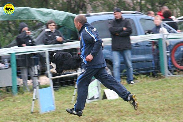 025-agility-dog-rosignano-02-05-2010