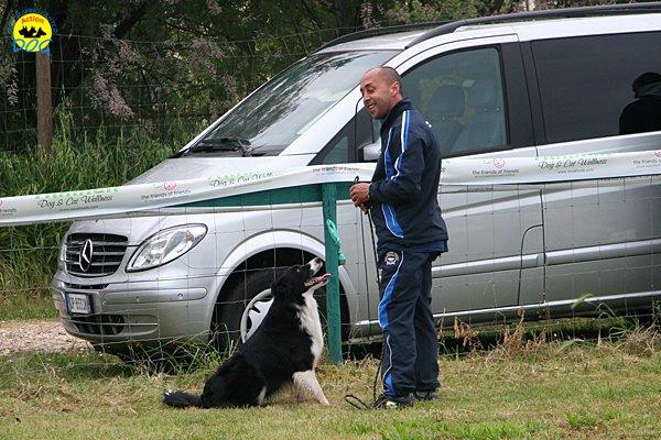 026-agility-dog-rosignano-02-05-2010