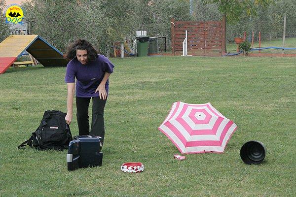 008-il-cane-impara-giocando-stage